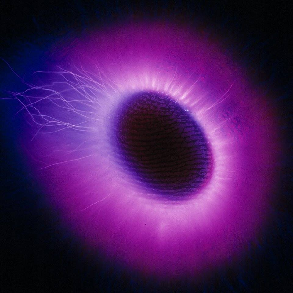 The Biointernet Technologies
