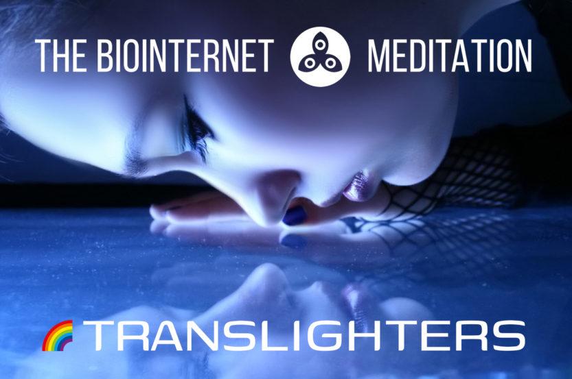 The Biointernet Meditation
